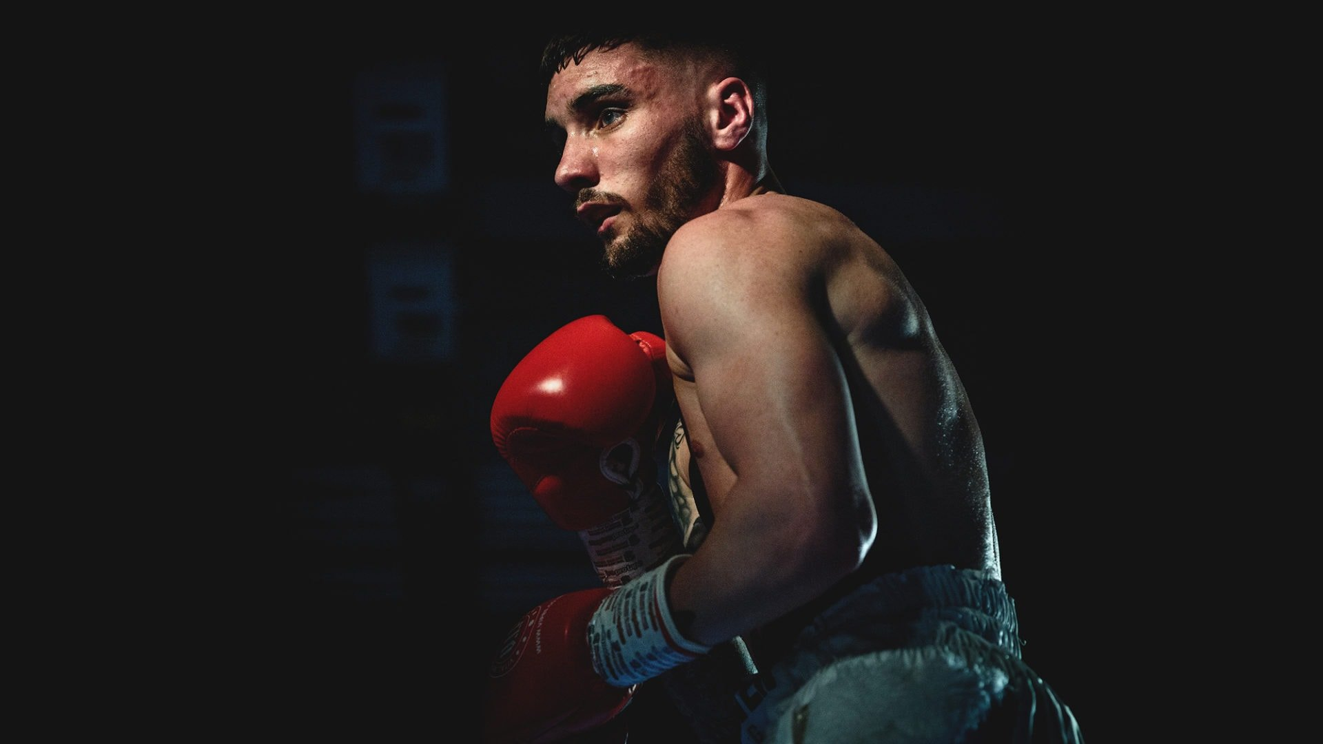 Boxschuhe Test und Vergleich